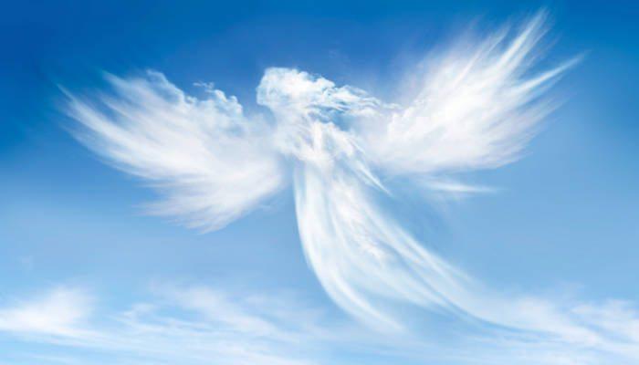 angel manifesto