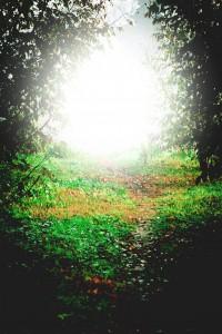 angelic flash of light sign