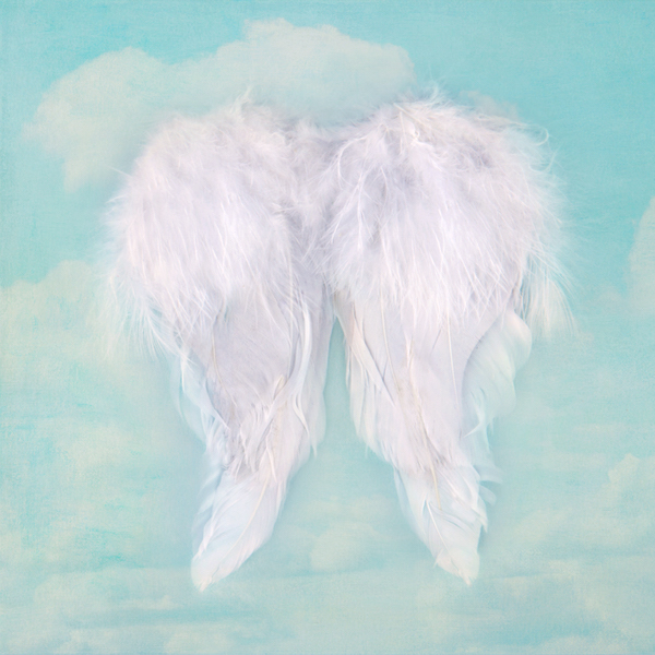 White angel wings on textured sky background