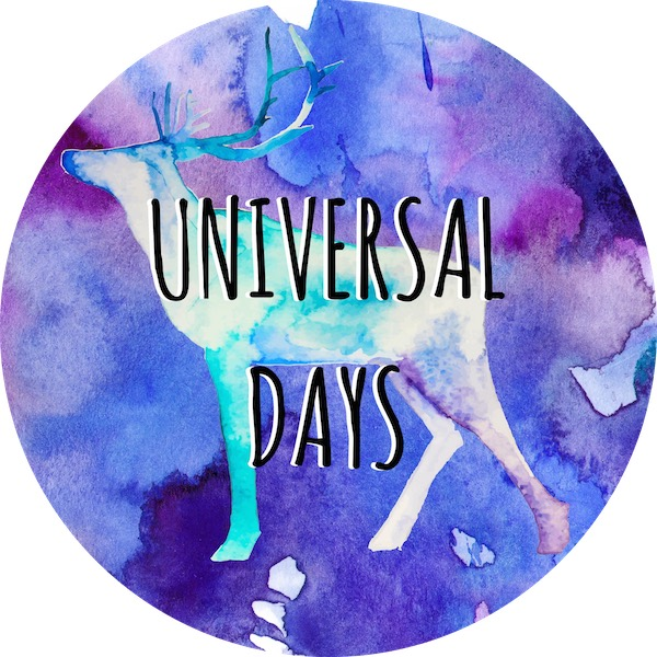 universal day number 19 february numerology