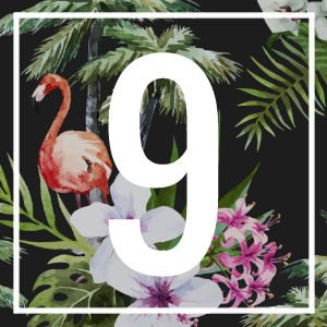 9 numerology