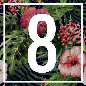 8 numerology