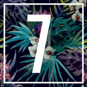 7 numerology