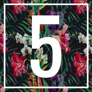 5 numerology
