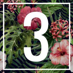 3 numerology