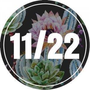 11-22-numerology