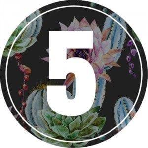 5-numerology
