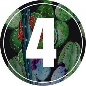 4-numerology