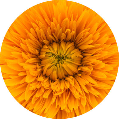 How to use the color yellow to heal shame and unworthiness