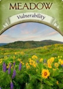 meadow vlunerability angel oracle card