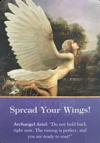 Angel Message Spread Your Wings